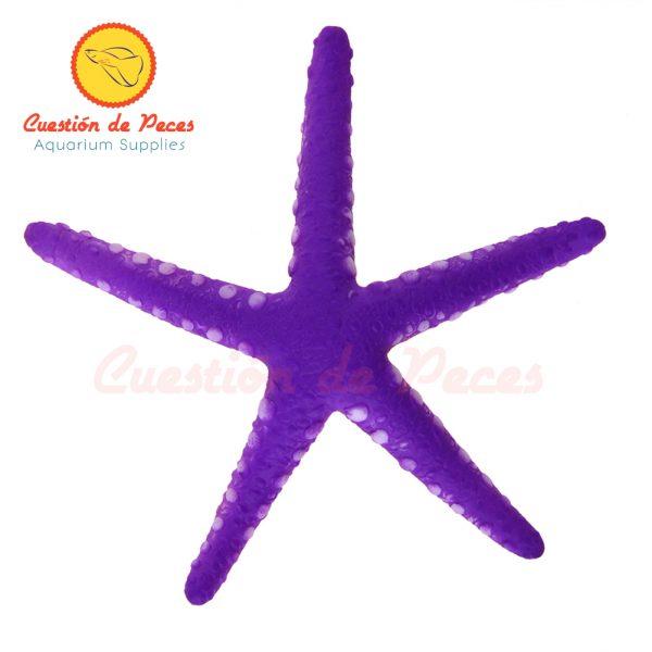 Adorno Acuario Pecera Estrella de Mar Fluorescente